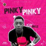 MUSIC : Icey Bills – Pinky Pinky