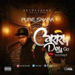 MUSIC: Pure Shark – Carry Dey Go