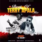 MIXTAPE: Dj Salam – Best Of Terry Apala Mix