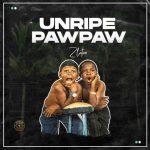 MUSIC: Zlatan – Unripe Pawpaw
