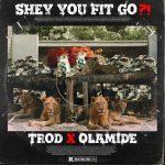 MUSIC: Trod Ft Olamide – Shey You Fit Go?!