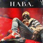 AUDIO+VIDEO: Blaqbonez – Haba (Prod. Tempoe)